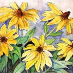 1basciano_Black-Eyed Susans_watercolour 6x9